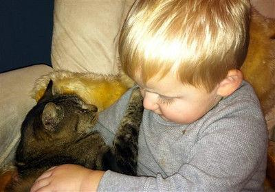 Wis. family reunites with cat lost 5 years ago