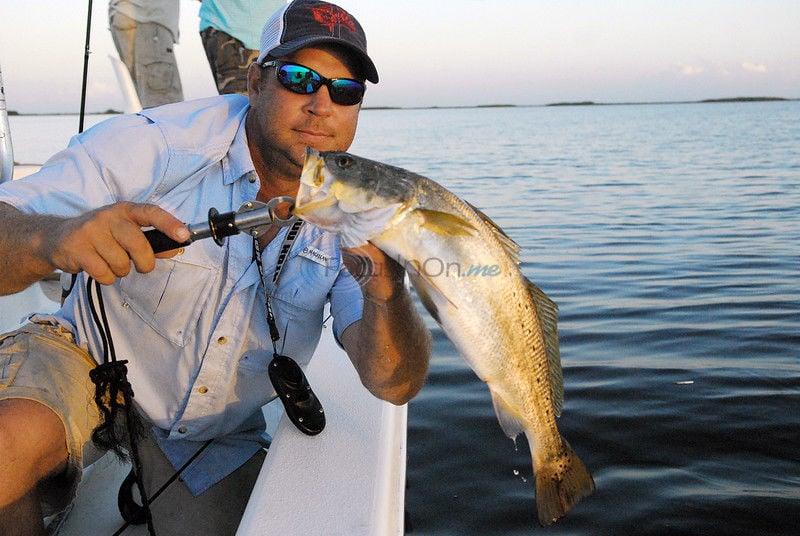 Louisiana's Calcasieu a sportsman's paradise for saltwater fishing