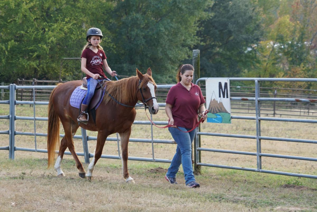 11072019_local_equine_therapy_1.JPG