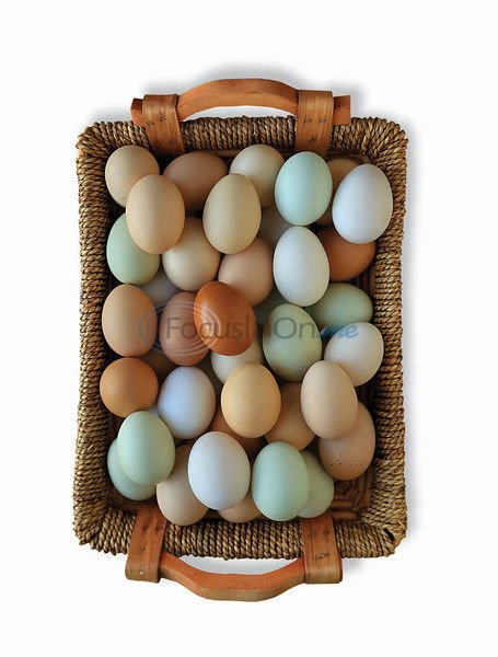 Put all your brunch in one egg basket