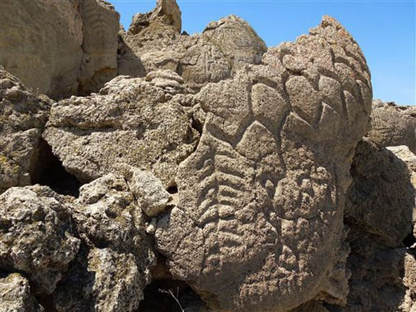 Nevada petroglyphs the oldest in North America