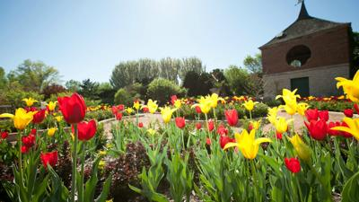 3 flower gardens that you need to see this spring