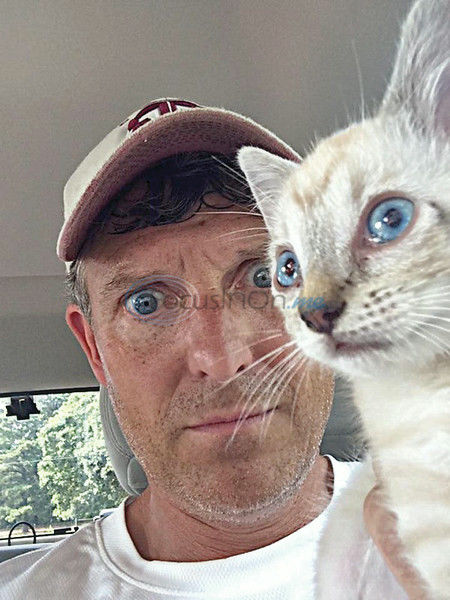A man and his kitten: Brian's new experience