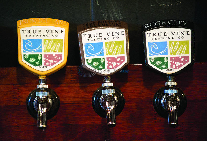 True Vine Brewing turns to crowdfunding for new projects