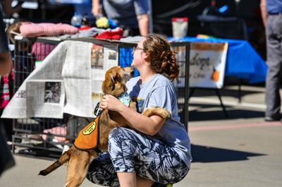 Dogtoberfest brings craft beer, animal adoptions to downtown square