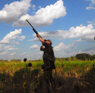 Opening dove hunt
