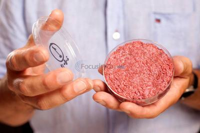 Q&A on the science of growing hamburger in the lab