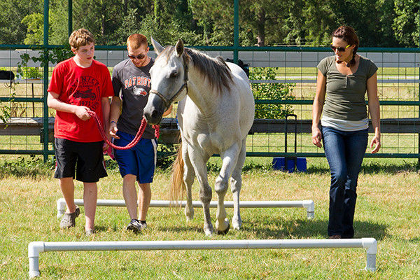 Camp helps children with autism