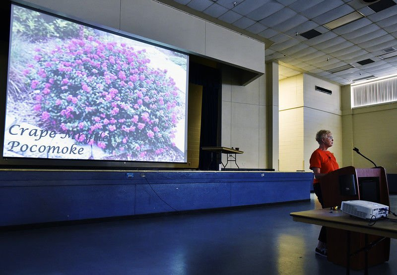 Master Gardeners host annual conference, sale