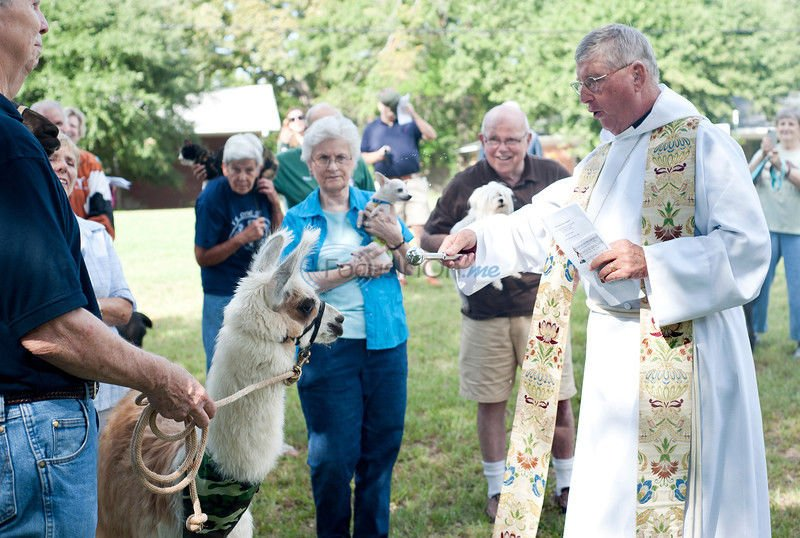 PHOTOS: 'According to its kind': Feast Day of St. Francis celebrated with pet blessing