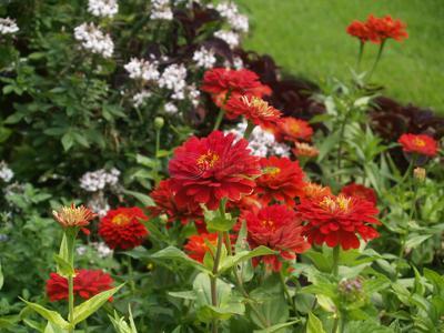 September time of preparation for fall gardening season