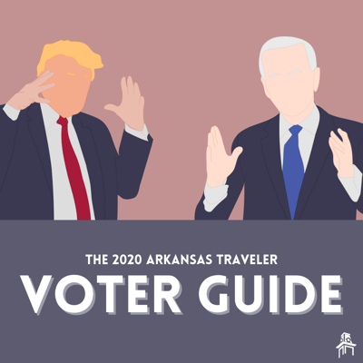 voter guide graphic