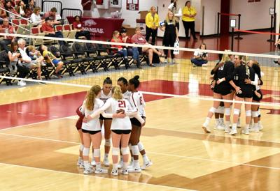 Razorback Volleyball Fails to Net a Home Win Against A&M