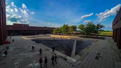 Poll finds 86% of students unaware big weird dip in ground outside Healey is actually courtyard