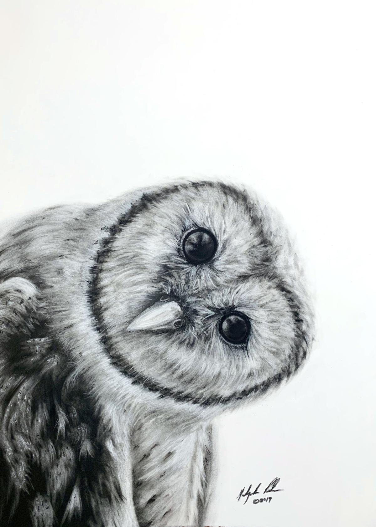 190704 QA %22Who%22 MaLynda Poulsen owl.jpg