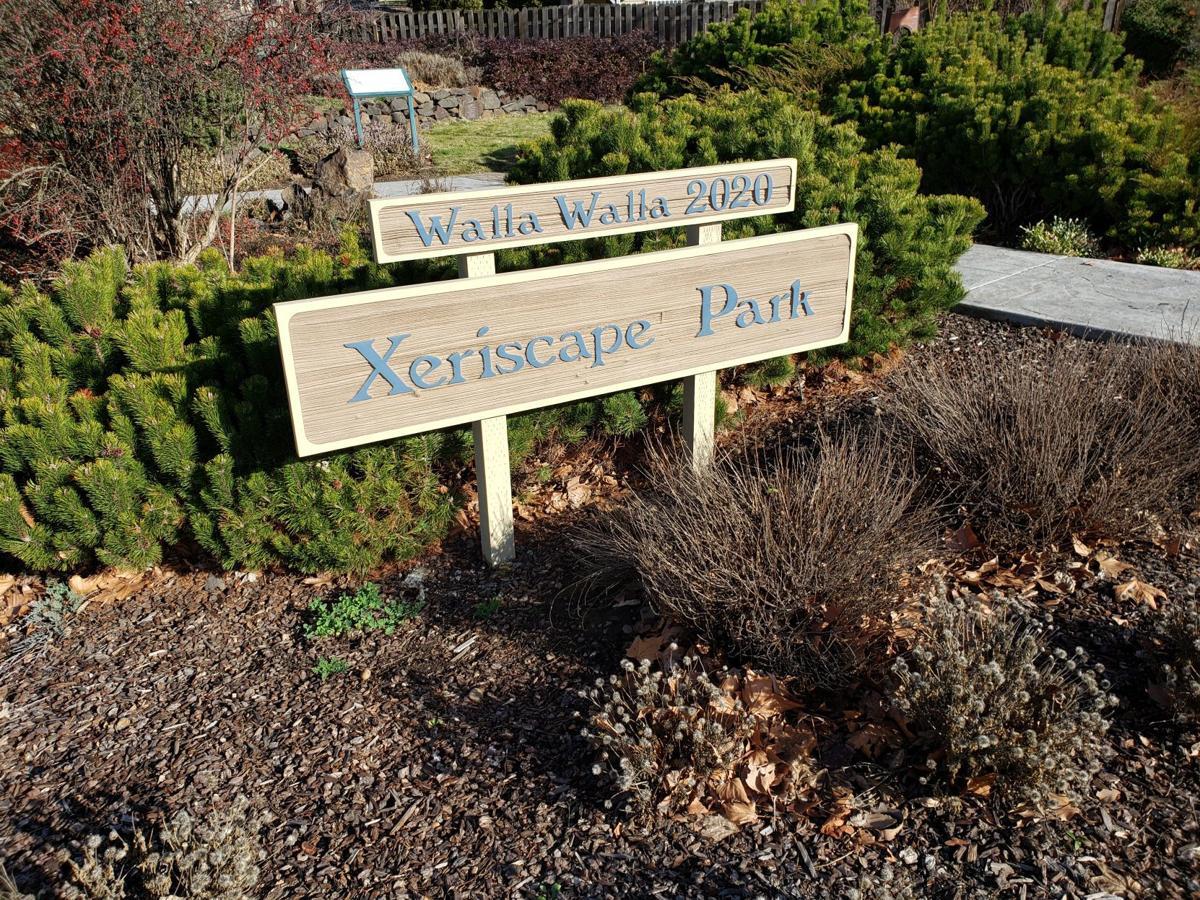 Xeriscape Park