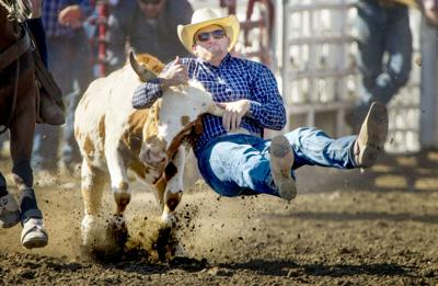 Frontier Days Rodeo Set To Go Things To Do Union