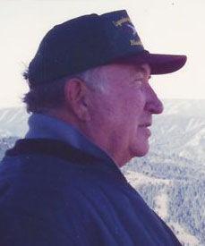 Lewis Frank Johnson