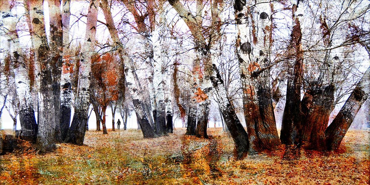 190905 LuAnn Ostergaard Autumn Wandering 1200 px sm.jpg