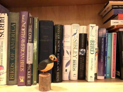 Audubon book group