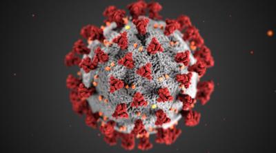 Coronavirus stock CDC