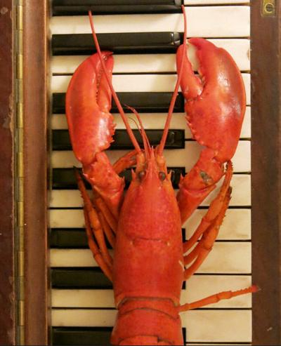 190905 Rogue Lobster.jpg