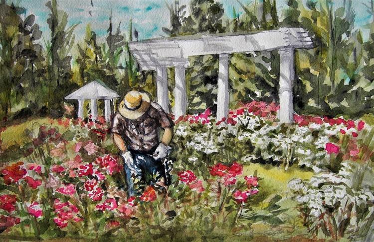 Gardener at Manito Park