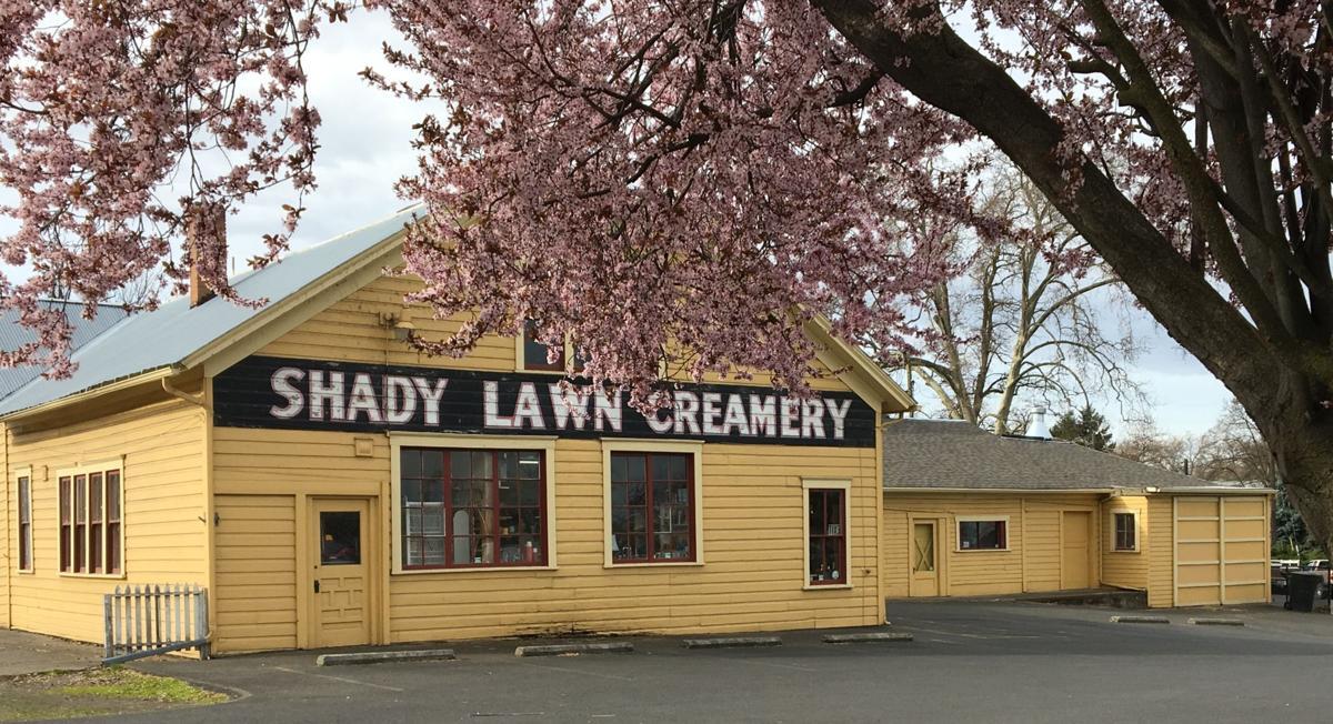 Shady Lawn Antiques.JPG