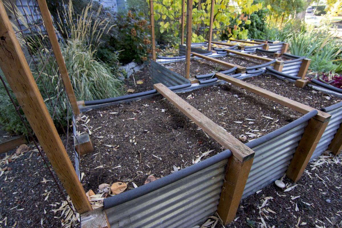 Williams-Culhane Garden: raised beds
