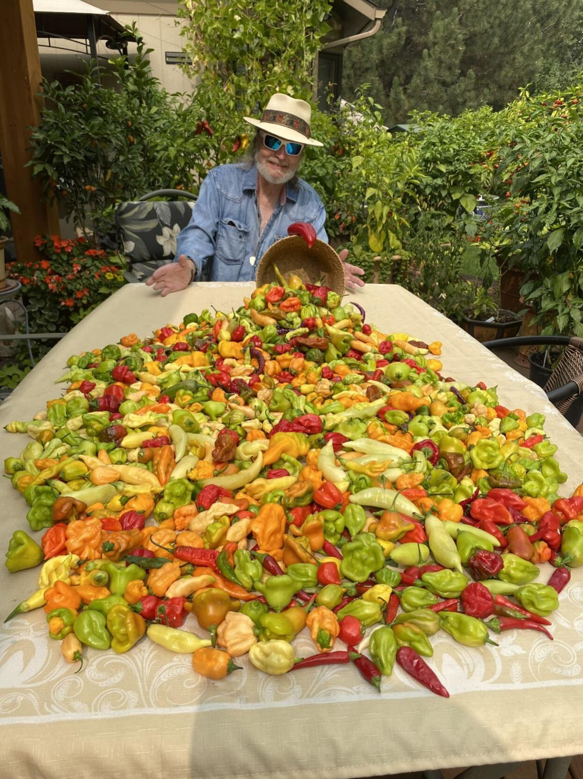 Terry with peppers large batch.jpg
