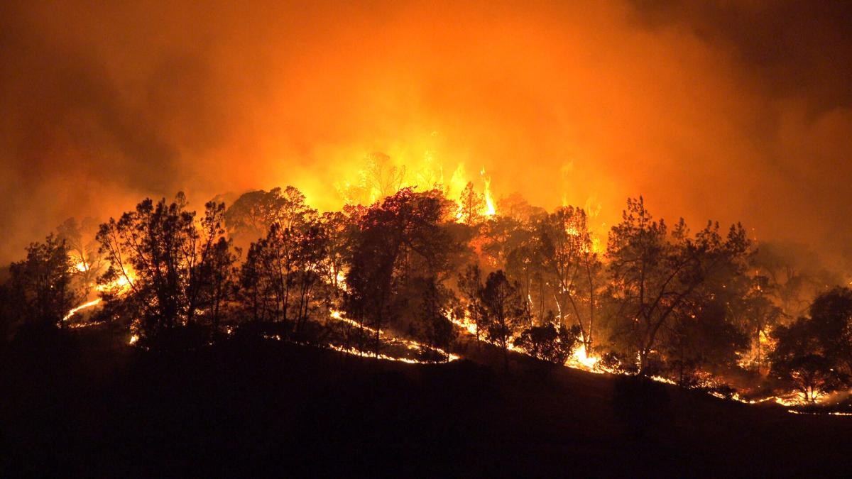 Burning hillside