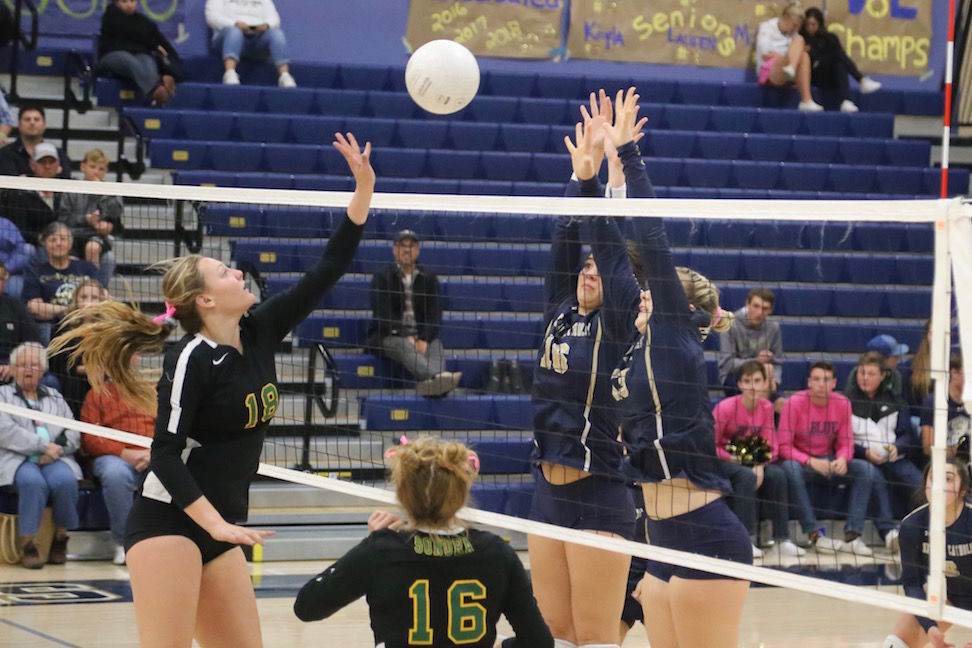 Sonora volleyball