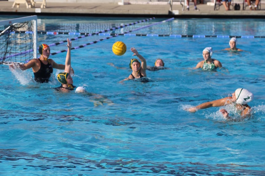 Sonora water polo