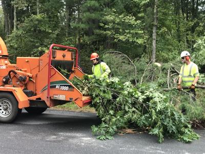 Eversource ramps up tree-trimming efforts