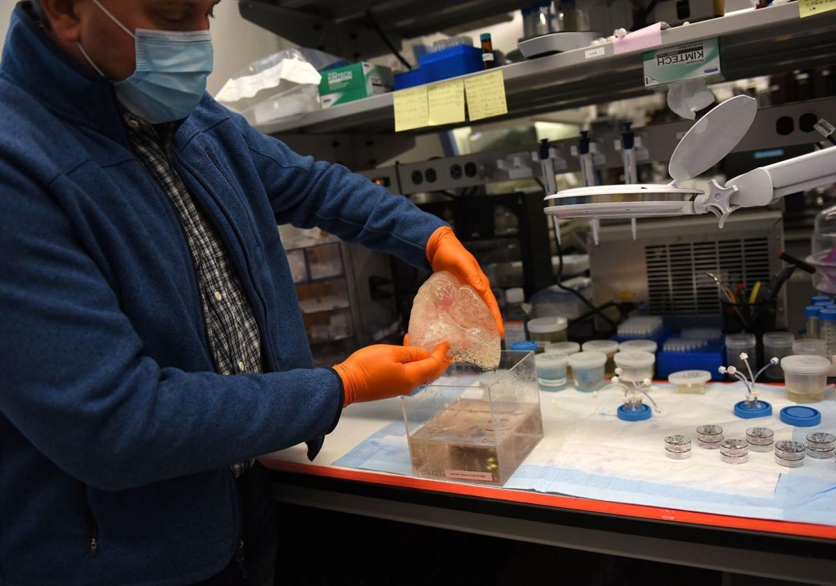 Company in Millyard working on making 3-D lungs