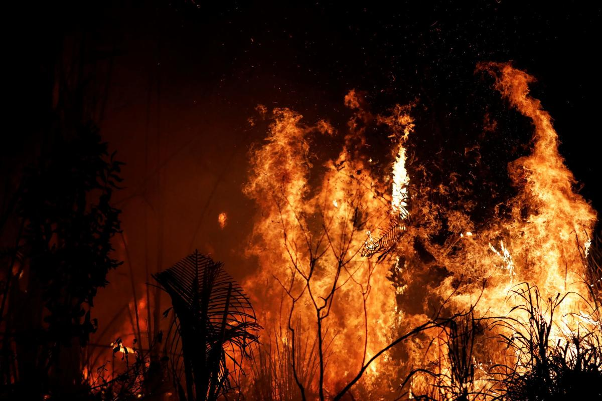 Fire burns a tract of Amazon jungle as it is cleared by loggers and farmers near Altamira