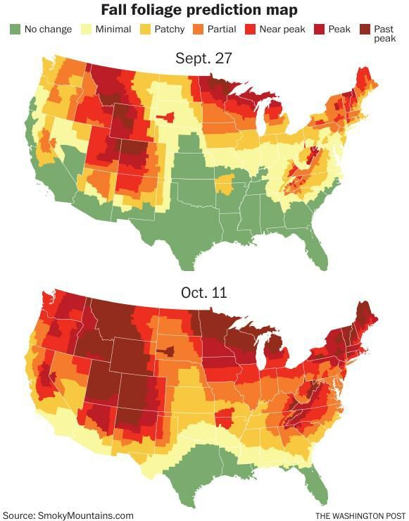 Foliage predication map