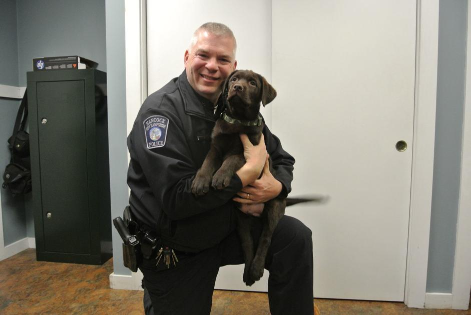 In Hancock, Labrador is newest member of police department – The