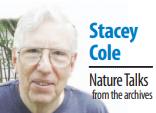 Stacey Cole Nature Talks column sig