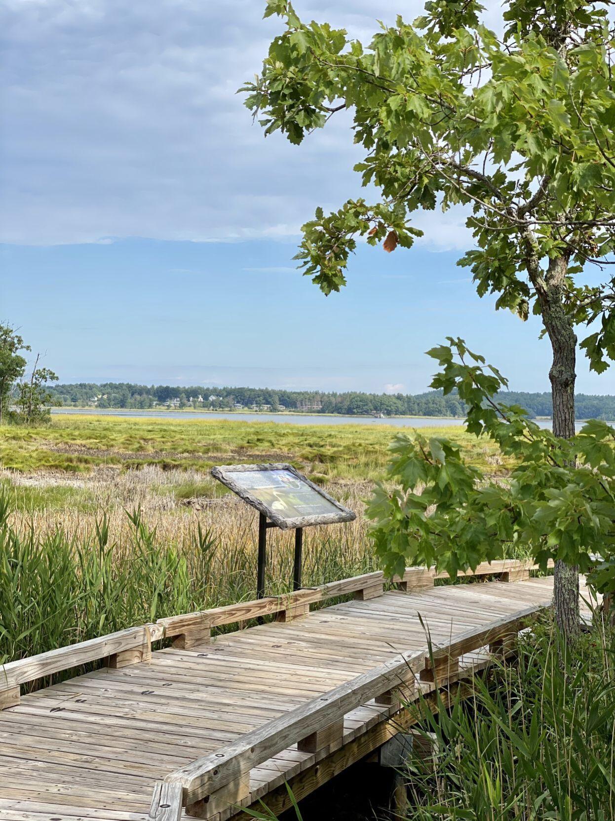 Boardwalk views