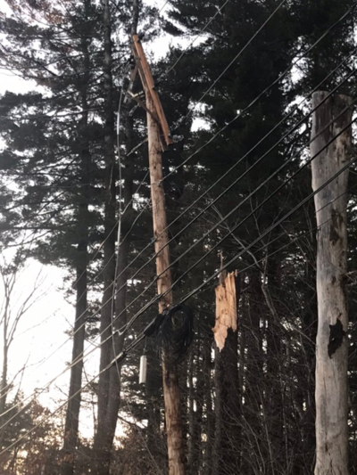 Fallen tree knocks out power, stalls traffic in Windham