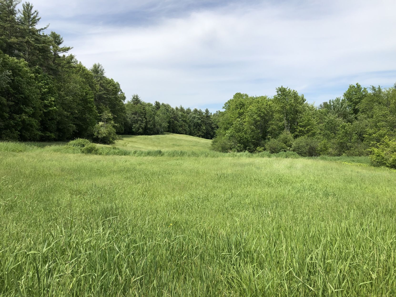 Tuckaway fields