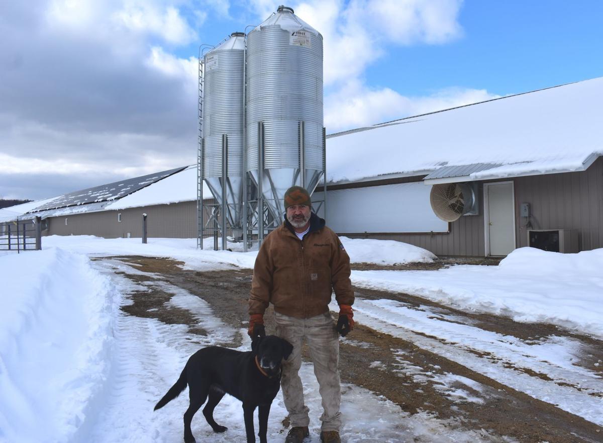 Tom Giovagnoli at Boscawen farm