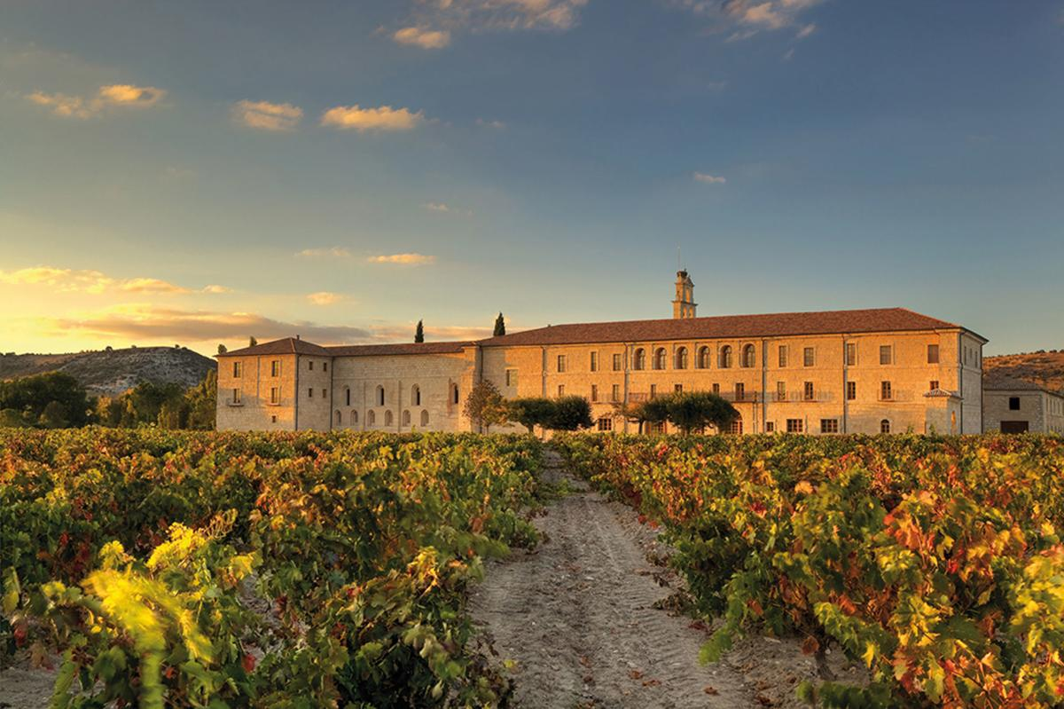 Travel: Wineries north of Madrid coming into their own as the 'Sonoma of Spain'