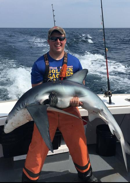 Hampton fishing captain: Feeder fish fueling shark sightings