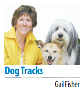 Gail Fisher's Dog Tracks column sig
