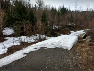 Opening delayed for Northern Coos OHRV trails