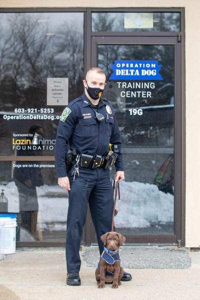 Nashua PD's therapy/tracking dog