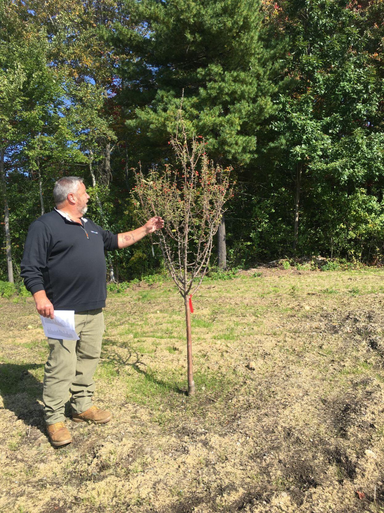 Eversource Vegetation Manager Bob Allen