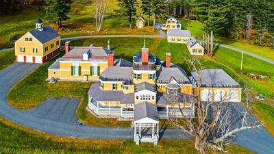 Ruger Newport estate